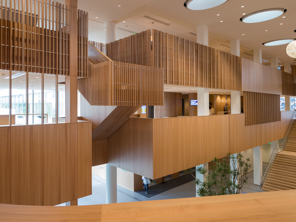 This is a unique shot of the three-story atrium slat guardrail system of made up of quartered elm. The client's use of wood wherever possible makes this award winning space one of the most beautiful corporate headquarters we have ever worked on.